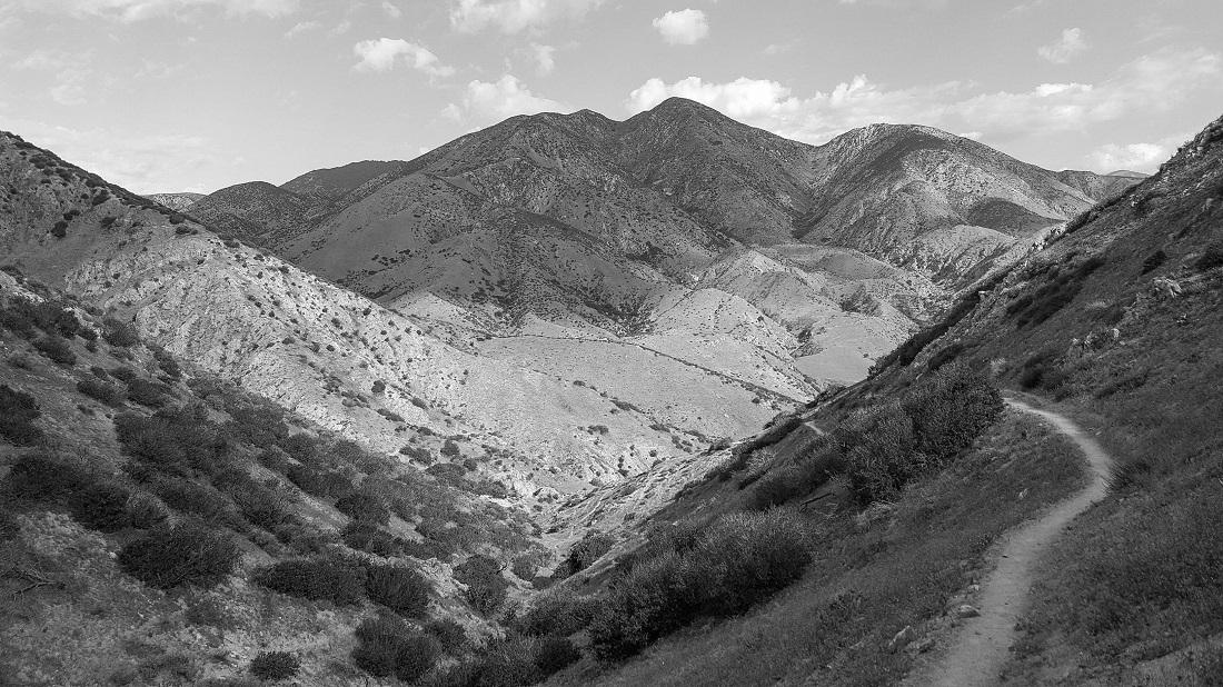 May 4 - rolling hills B&W