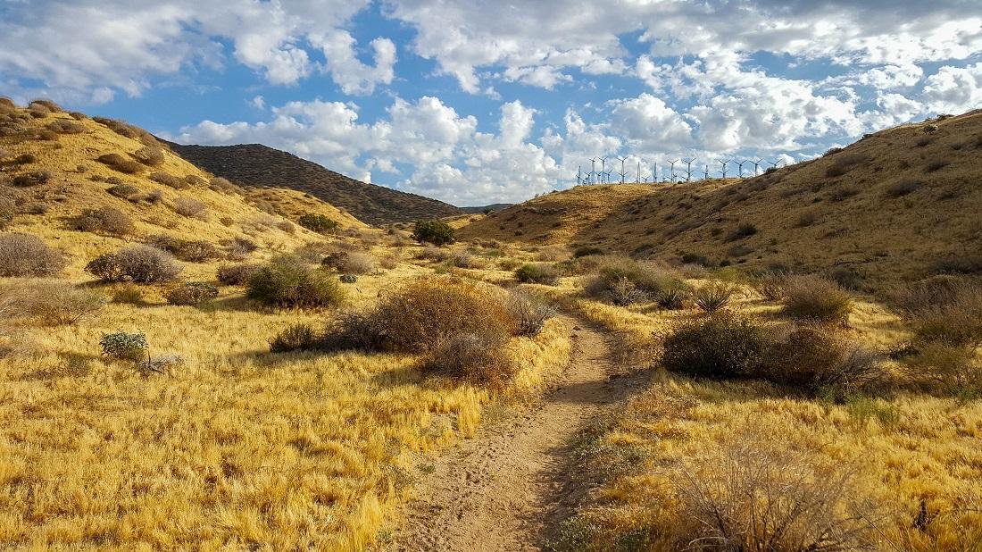 May 4 - trail